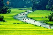 Halong Hanoi Package Tour