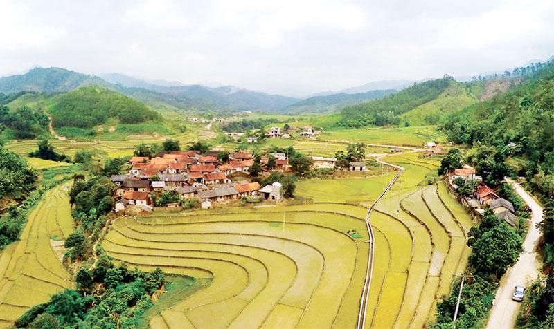 Old Village in Binh Lieu